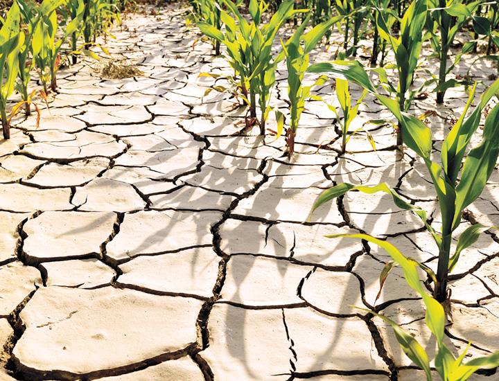 Klimawandel und Umweltbelastung